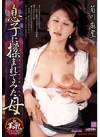 菊川麻里 「デリ妻」