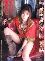 中谷カイト 「RedDragon」